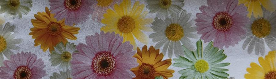 Daisy Chain Embroidery Vinyl