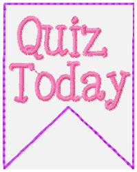 SSBJ Banner Planner Embroidery File-Quiz Today