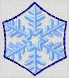 LBS Snowflake Embroidery File
